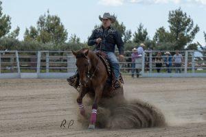 Joaquim Font & Topsail Tinseltown, 1º Novice Rider 2 Hands