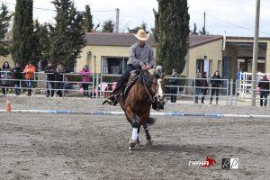 Andreu Nogué & Ricostyle