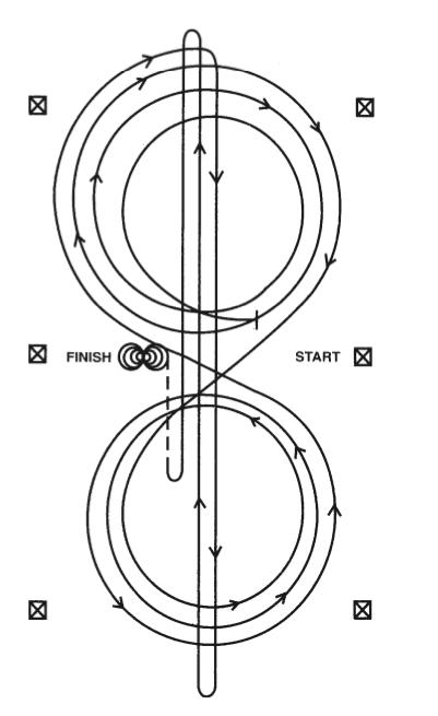 pattern 2 patron reining