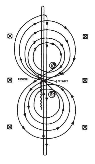 pattern 3 patron reining