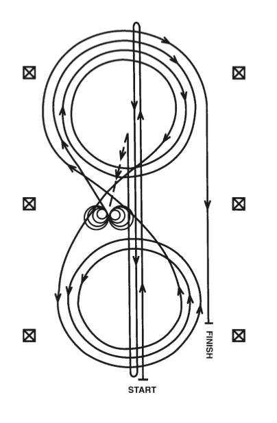 pattern 7 patron reining