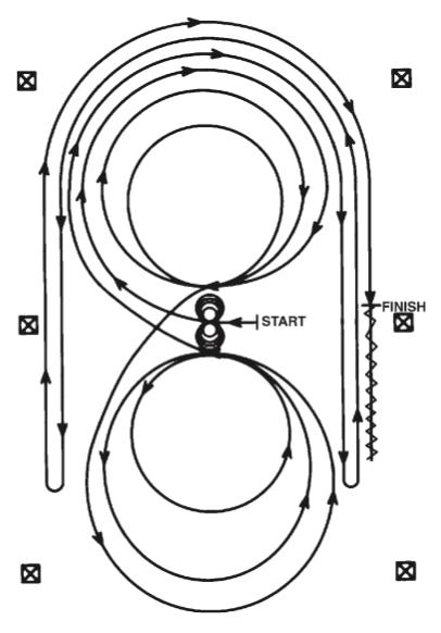 pattern 8 patron reining