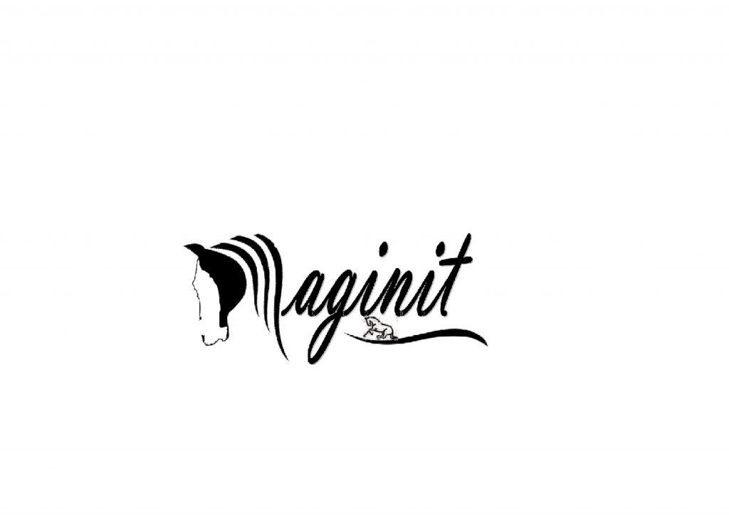 high maginit6